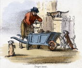 Vignette from a lithographic plate showing a man weighing dog meat for sale surrounded by the cats and dogs of the neighbourhood Taken from 'The...