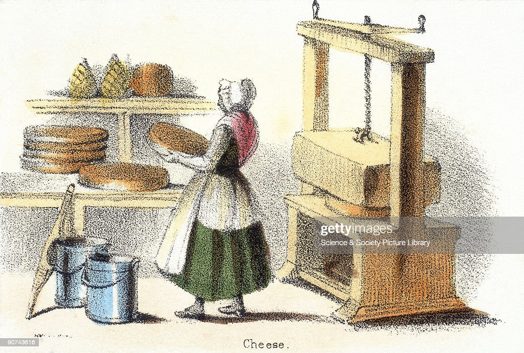 Vignette from a lithographic plate showing a milkmaid pressing cheese in a dairy Taken from the 'Bull Cow and Calf' in 'Graphic Illustrations of...