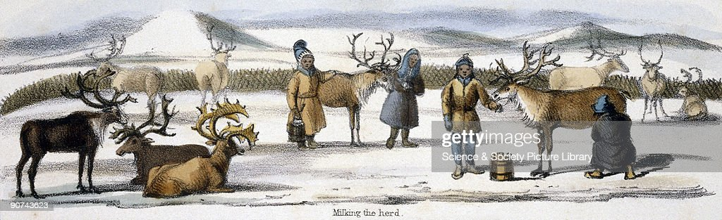 Vignette from a lithographic plate showing herdsmen with their reindeer Taken from 'The Rein Deer' in 'Graphic Illustrations of Animals showing their...