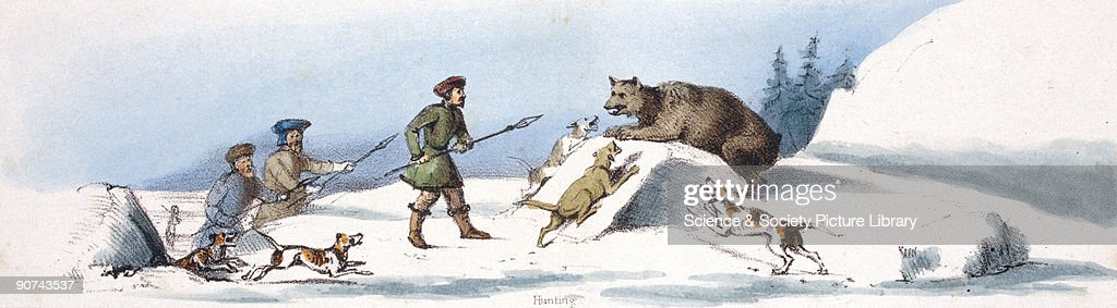 Vignette from a lithographic plate showing hunters with dogs attacking a bear Taken from 'The Bear' in 'Graphic Illustrations of Animals showing...