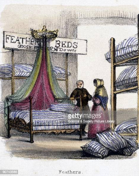 Vignette from a lithographic plate showing the interior of a shop selling feather beds made of goose feathers and down Taken from 'The Swan Goose and...