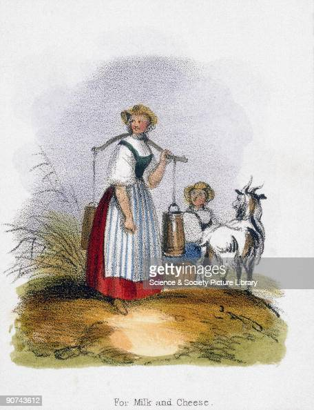 Vignette from a lithographic plate showing two milkmaids one milking the goat while the other carries the containers of milk with a yoke Taken from...
