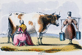 Vignette from a lithographic plate showing two milkmaids with a cow in the countryside Taken from 'The Bull Cow and Calf' in 'Graphic Illustrations...