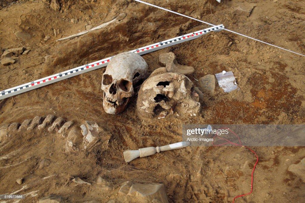 Viking Era Human Skeletal Remains at Archaeological Site