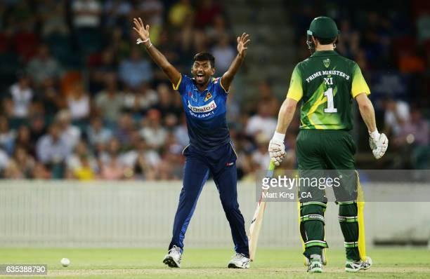 Vikum Sanjaya of Sri Lanka appeals during the T20 warm up match between the Australian PM's XI and Sri Lanka at Manuka Oval on February 15 2017 in...
