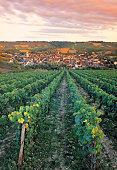Village and farmland , Irancy , Burgundy , France