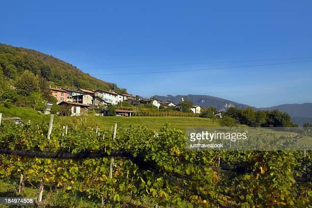 Dorf und den Weinberg in Ticino Canton