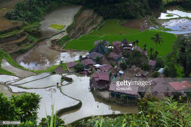 village in the rice terraces Philippines