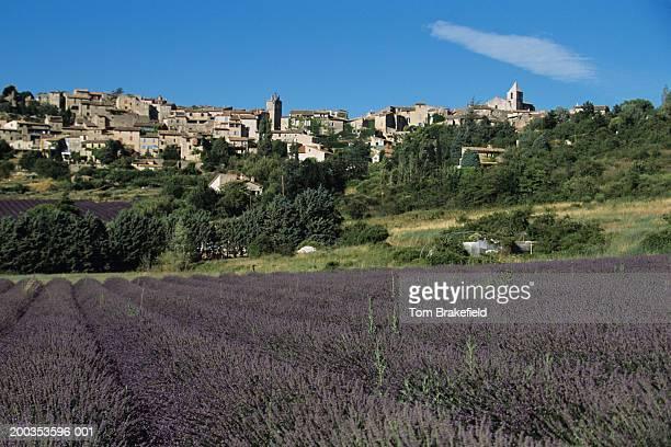 Village of Aurel behind lavender fields, Provence, France
