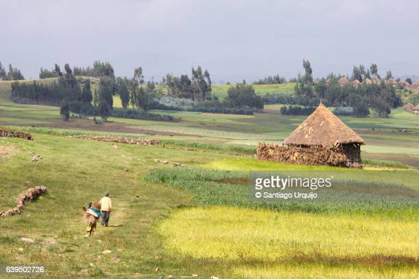 Village of thatched huts in Oromia region