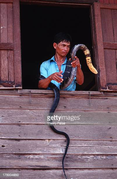 A villager and one of his pet cobras