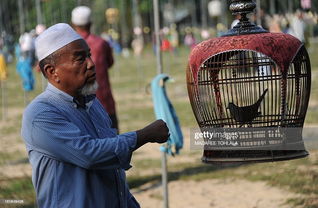 A villager stands by a hanging bird cages during a bird-singing contest in Thailand's southern province of Narathiwat on September 23, 2013. Hundreds of bird owners from Thailand, Malaysia and Singapore took part in the traditional contest. AFP PHOTO / Madaree TOHLALA
