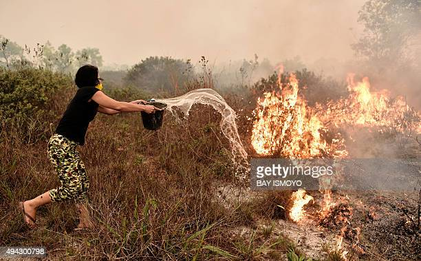 A villager tries to extinguish a peatland fire on the outskirts of Palangkaraya city Central Kalimantan on October 26 2015 For nearly two months...