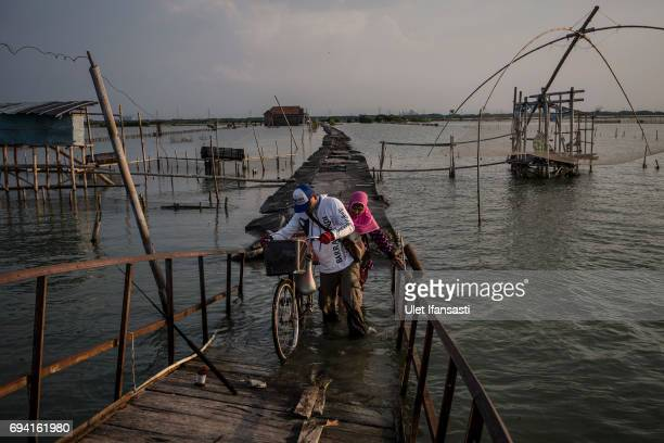 Villagers cross the bridge at the land which has been sinking below sea level at Bedono village on June 7 2017 in Demak Indonesia Indonesia is known...
