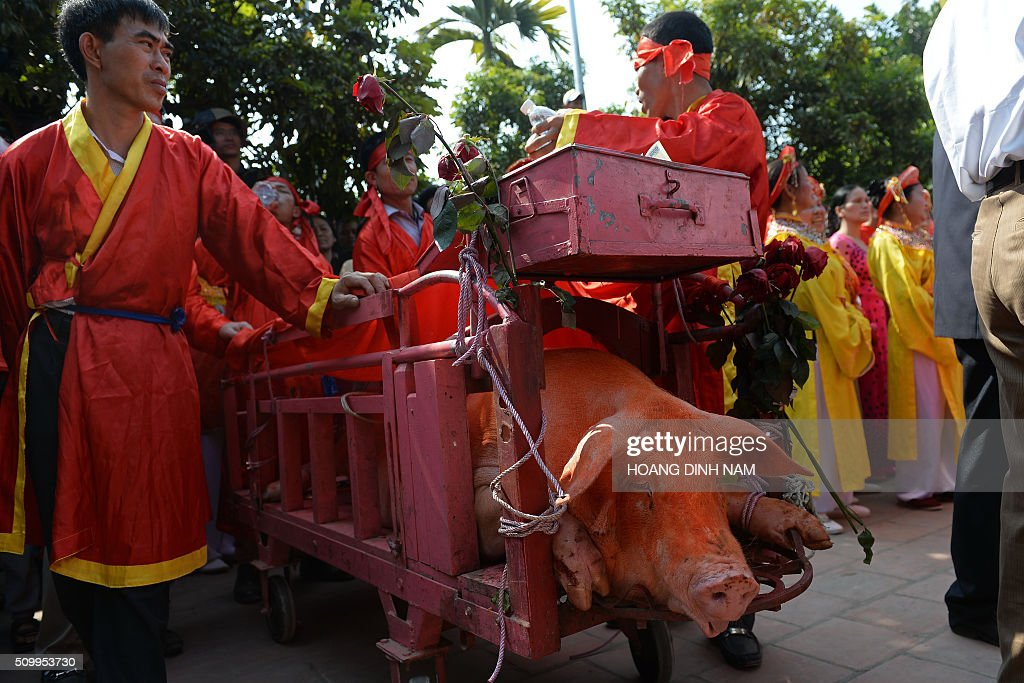 Villagers in red festive dress stand beside a cart with a sacrificial pig at the traditional pig-slaughter festival in Nem Thuong village in the northern province of Bac Ninh on February 13, 2016. Local authorities and villagers performed this year's ritualistic pig slaughter, which takes place on the sixth day of the Lunar New Year, out of public view following fierce criticism from animal rights groups. AFP PHOTO / HOANG DINH Nam / AFP / HOANG DINH NAM
