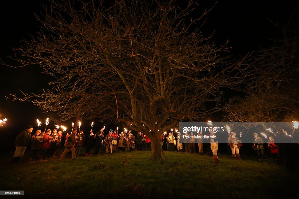 Villagers surround the oldest and largest tree in the orchard during the Apple Howling ceremony at Old Mill Farm on January 5, 2013 in Bolney, England. In this ancient ritual evil spirits are driven out and good spirits are encouraged to produce a bountiful apple crop for the following year's cider drink.