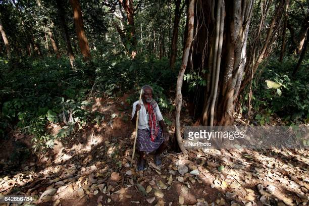 Villagers those are in the old age group look on the corridor of the Koska forest as they keep watch for timber mafia and other illegal people near...