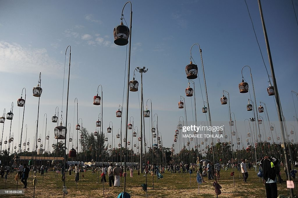 Villagers walk past hanging bird cages during a bird-singing contest in Thailand's southern province of Narathiwat on September 23, 2013. Hundreds of bird owners from Thailand, Malaysia and Singapore took part in the traditional contest. AFP PHOTO / Madaree TOHLALA