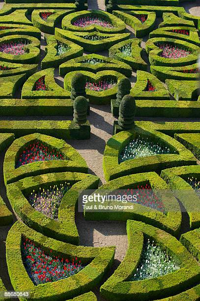 Villandry garden and castle, Loire Valley, France.