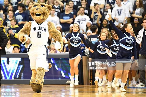 Villanova Wildcats mascot Wildcat leads the cheerleaders onto the floor during a NCAA Basketball game between the Temple Owls and the Villanova...
