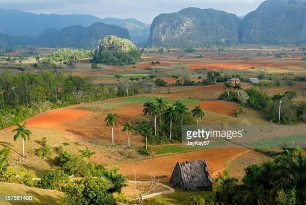 La vallée de Viñales Cuba