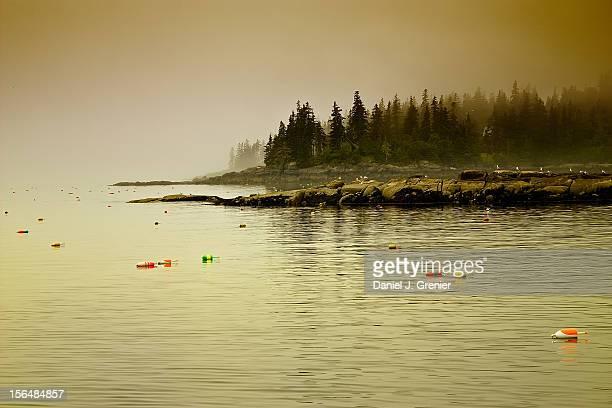 Vinalhaven Coastline