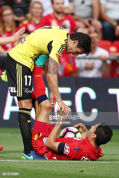 Vince Lia of Wellington Phoenix helps up Marcelo Carrusca of Adelaide United during the round nine ALeague match between Adelaide United and the...