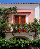 Vine-covered balcony