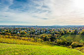 Vineyard in Autumn and the Skyline of Vienna in Austria