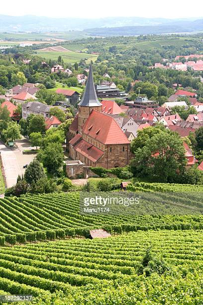 vineyard rows in a small german town
