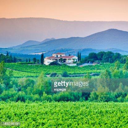 villa, vigneti e colline ondulate della Linguadoca-Rossiglione