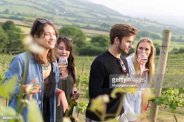Vineyard walk and tasting