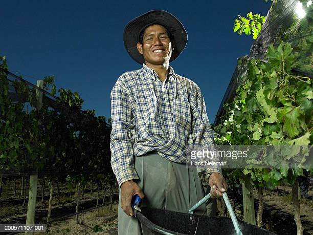 Vineyard worker with container in vineyard, smiling, portrait