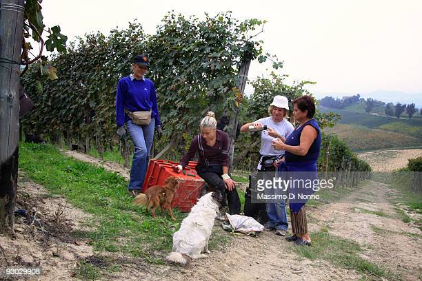 Vineyard workers have a break during the grape harvest on October 6 2009 in Novello near Cuneo Italy Barolo wine is produced in Cuneo province within...