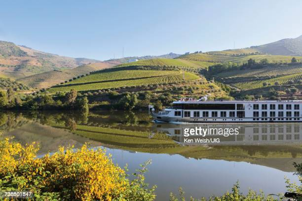 'Vineyards along Douro river, Portugal.'