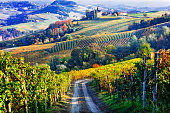 Vineyards of Italian countryside in autumn