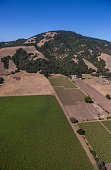 Vineyards in Bennett Valley are viewed from the air on June 22 over Santa Rosa California Growth has become a major political and social issue in...