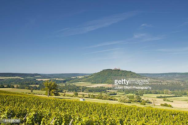 Vineyards near to the hilltop village of Vezelay.