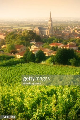 Vineyards of Cornas