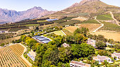 This pic shows the famous vineyards and wine farms in south africa. The image shows Vineyards with mountains on background on a sunny day in Stellenbosch. The grape farm can be seen in the pic. The pi