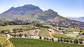 This pic shows the aerial view of Vineyards with mountains in background in Cape Town. The wine farms are famous in this area and produced large amount of wine. The pic is taken by drone and in daytim