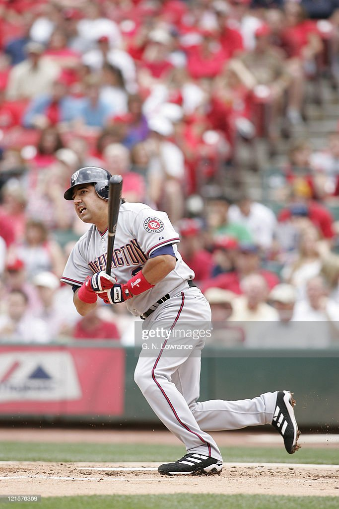 Vinny Castilla of the Washington Nationals at the plate during a game against the St Louis Cardinals at Busch Stadium in St Louis Mo on May 29 2005...