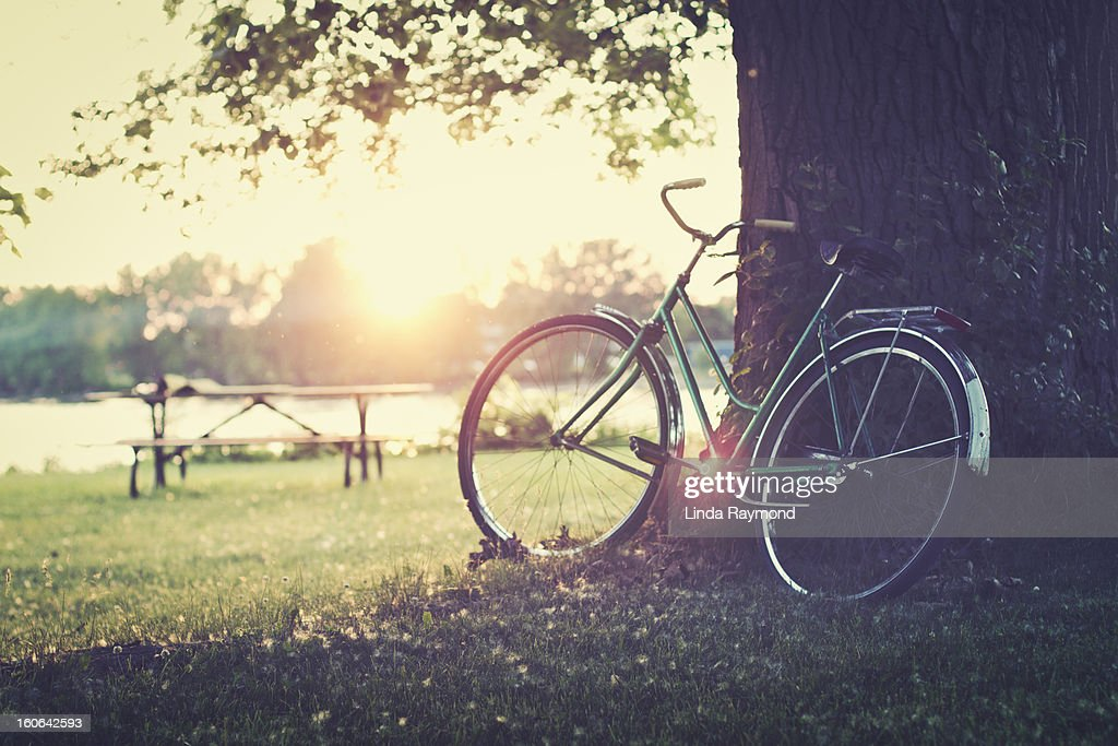 Vintage bicycle at sunset