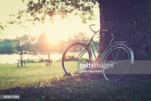 Vintage bicycle at sunset