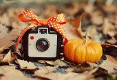 Vintage Camera,  miniature pumpkin and a bow