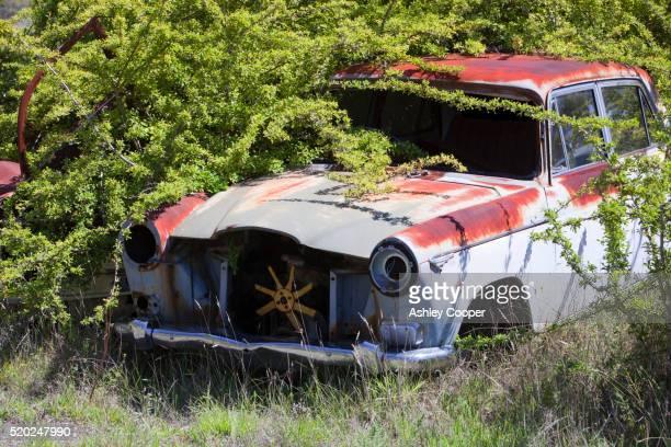 Vintage car at wrecking yard