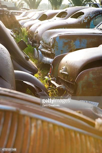 Vintage cars abandoned in scrap yard