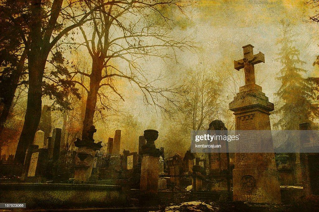Vintage Cluj Cemetery