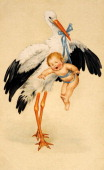 A vintage colour illustration celebrating a birth with a newborn baby boy being held by a stork circa 1910
