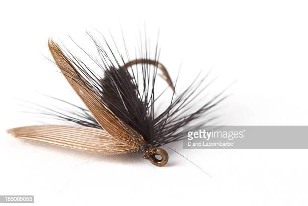 Vintage Appât de pêche à la mouche